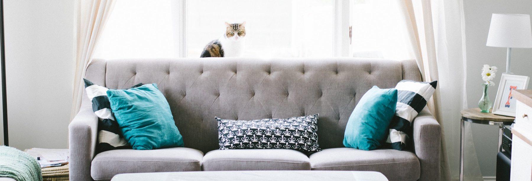 First Apartment | Essential Checklist | Boulder Colorado Springs Denver